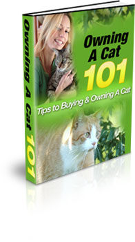 Product picture Buying and Owning a Cat